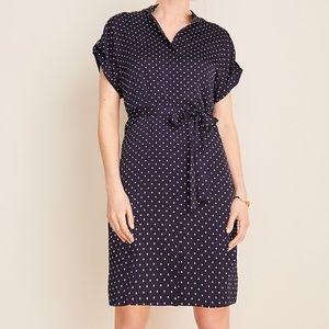 Ann Taylor Polka Dot Belted Shirtdress